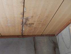天井の雨漏りによる事例